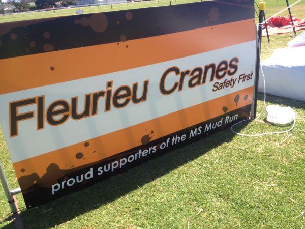 Fleurieu Cranes